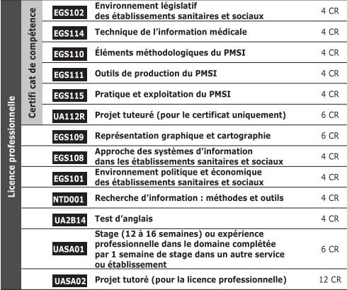 Licence Pro Tim Institut Catholique De Rennes Diplomes D